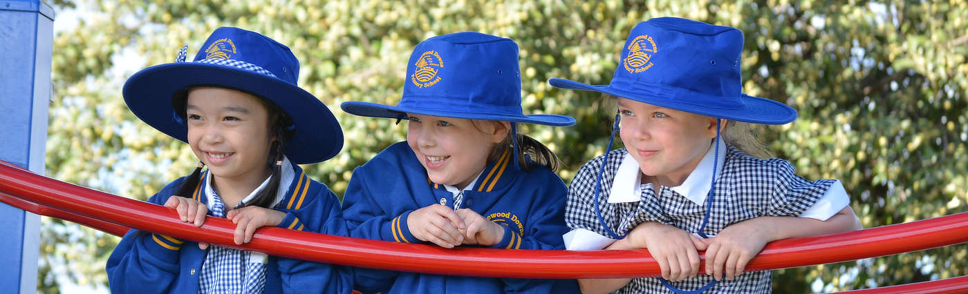 Our School | Rosewood Downs Primary School